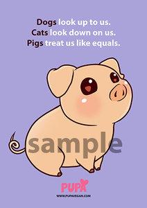 GRATIS - ansichtkaart - Pigs treat us like equals